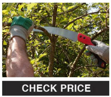 Saws and Other Pruning Tools